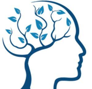 ذهن برتر